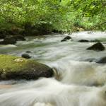 """River Teign Rapids"" by AvalonLight"