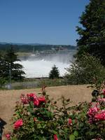 Bonneville Dam with roses