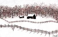 Winter Country