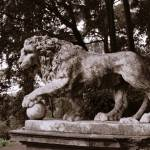 """Lion Statue in Park, Florence, Italy"" by Travelerscout"