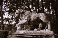 Lion Statue in Park, Florence, Italy