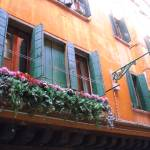 """Floral Window in Florence, Italy"" by Travelerscout"