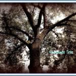 """""""Chocolate Tree"""" by JoslynRamey82"""