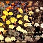 """""""Flowers Fade"""" by JoslynRamey82"""