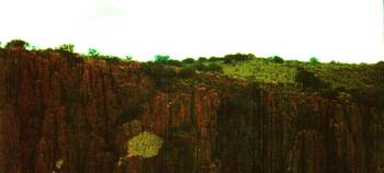 Green Cliff