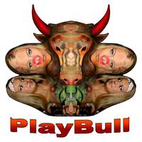 PlayBull enhanced (white background)