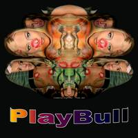PlayBull original (black background)