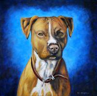 Angel_amstaff_0001RC
