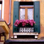 """Floral Window in Venice"" by Travelerscout"