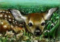 Baby Fawn and Lilies of the Valley