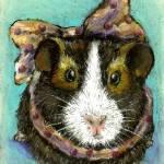 """Guinea Pig"" by tanyabond"