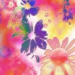 """""""Floral Fantasy"""" by elayne"""