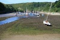 Boats at Solva Harbour