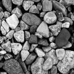 """""""Rhode Island Rocks"""" by rachellynne"""