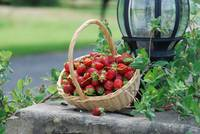 STAWBERRIES IN A BASKET