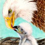 """Baby Eagle-1"" by HomeART-Best-Choices"