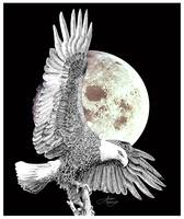 Eagle on Moon-1