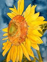 sunflower macro flower watercolor painting print