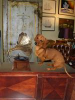 antiques dog