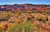 Snow Canyon I