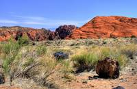 Snow Canyon IV