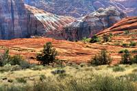 Snow Canyon V