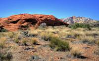 Snow Canyon VIII