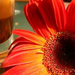 """Coffee with the Flower"" by ramit"