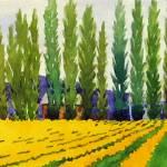 """Yellow fields"" by studiobythesound"