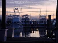 Southport_marina_sunrise_fog