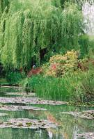 Gardens of Giverny, 2005