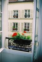 Paris Day Window Box
