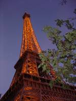 The Eiffel Tower Aglow