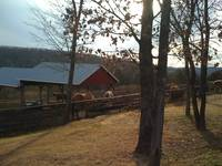 Big Cedar Lodge Horse Barn
