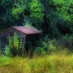 """the corn crib"" by shackman3"
