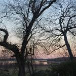 """Lake Lewisville at Sunset - late winter"" by blondie478"