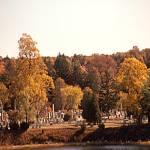 """Fall leaves in Mystic Conn."" by memoriesoflove"