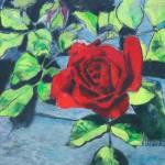 """""""rose for Joan"""" by hitchcock"""