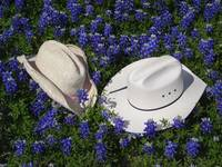 Cowboy Hats His & Her's In Blue Bonnets