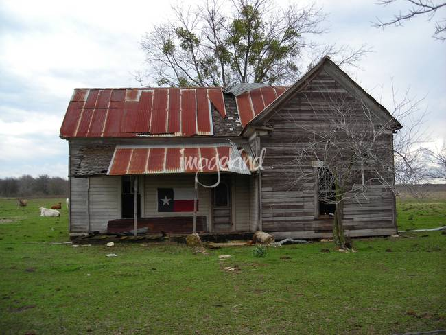 Old Texas Farm House With Texas Flag By Bush Camo