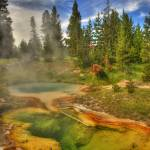 """West thumb geyser basin"" by stevenberry"