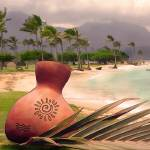"""Ipu on Kailua Beach"" by renyen"