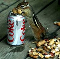 Peanuts make me thirsty