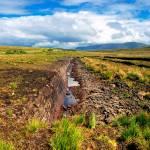 """L0577 Turf Bog - Co.Mayo"" by walshphotos"