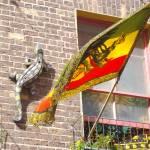 """lizard and rasta flag...."" by bevansusan"