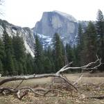 """Half Dome 1"" by jenns"