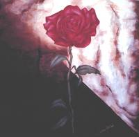 2003 fineart rosebloom