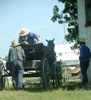 Amish Men Talking Shop