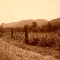 Country Gate in Sepia Art Prints & Posters by Mahala Davis