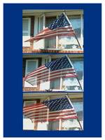 Views of USA flags Navy Blue